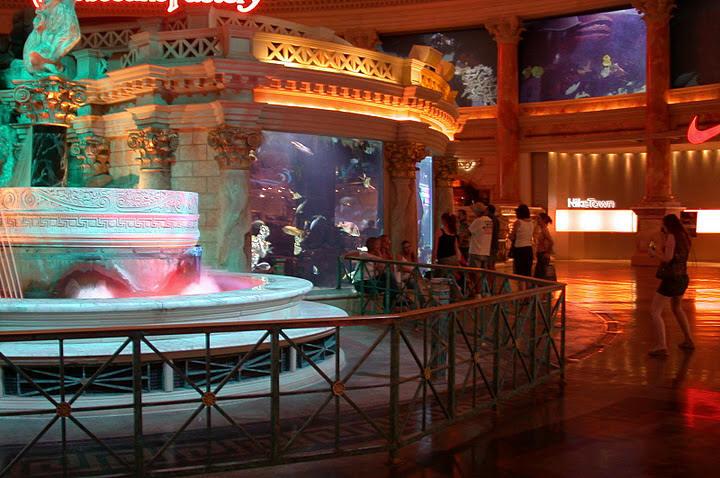 Atlantis aquarium caesars palace 1000 aquarium ideas for Caesars tropical fish